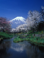 glamour photo of Mount Fuji